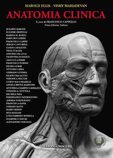 Winniearcher.com Anatomia clinica Image