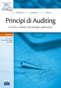 Principi di Auditing. Concetti, modelli, metodologie, applicazioni. Vol. 2