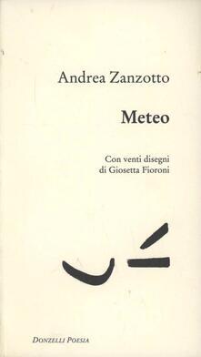 Meteo - Andrea Zanzotto - copertina