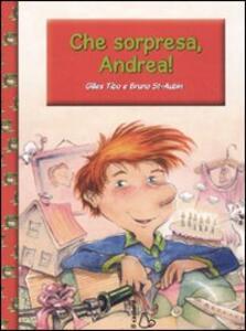 Che sorpresa, Andrea! Ediz. illustrata