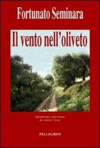 Il vento nell'oliveto