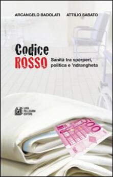 Squillogame.it Codice rosso. Sanità tra sperperi, politica e 'ndrangheta Image