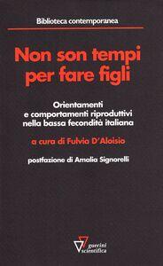 Non sono tempi per fare figli. Orientamenti e comportamenti riproduttivi nella bassa fecondità italiana