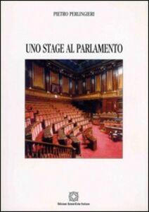 Uno stage al parlamento