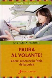 Lpgcsostenible.es Paura al volante! Come superare la fobia della guida Image