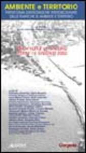 Ambiente e territorio. Piattaforma di integrazione interdisciplinare delle tematiche su ambiente e territorio. Giornata di studio (Rimini, 15 giugno 2002) - copertina