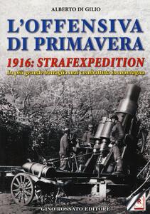 L' offensiva di primavera. 1916: strafexpedition. La più grande battaglia mai combattuta in montagna - Alberto Di Gilio - copertina