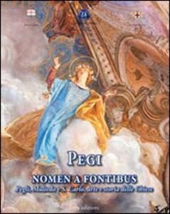 Pegi nomen e fontibus. Pegli, Multedo e S. Carlo, arte e storia delle chiese