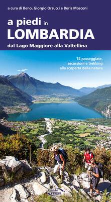 Voluntariadobaleares2014.es A piedi in Lombardia. Dal Lago Maggiore alla Valtellina. 74 passeggiate, escursioni e trekking alla scoperta della natura Image