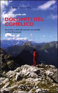 La nuova guida alle Dolomiti del Comelico. Escursioni e salite alle cime per via normale in oltre 60 proposte