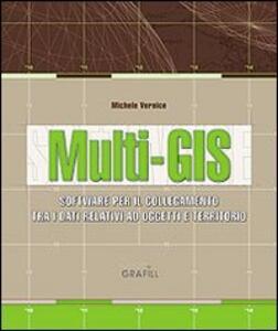 Multi-GIS. Software per il collegamento tra dati relativi ad un oggetto e la loro ubicazione sul territorio. Con Contenuto digitale per download e accesso on line