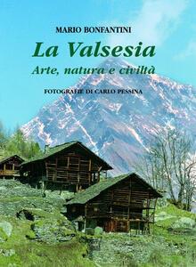 La Valsesia. Arte, natura e civiltà. Ediz. trilingue