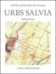 Urbs Salvia. Forma e urbanistica