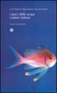Camfeed.it I pesci delle acque costiere italiane Image