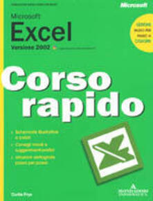 Microsoft Excel 2002.pdf
