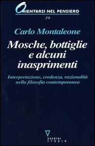 Mosche, bottiglie e alcuni inasprimenti. Interpretazione, credenza, razionalità nella filosofia contemporanea