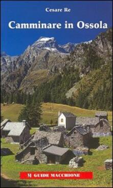 Letterarioprimopiano.it Camminare in Ossola Image
