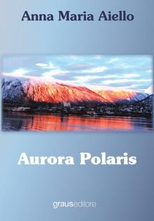 Promoartpalermo.it Aurora polaris Image