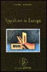 Appaltare in Europa
