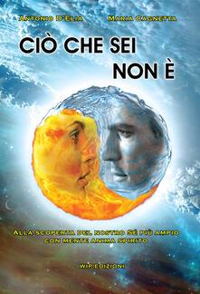 Ciò che sei non è. Alla scoperta del nostro sé più ampio con mente anima spirito - Antonio D'Elia,Maria Cagnetta - copertina