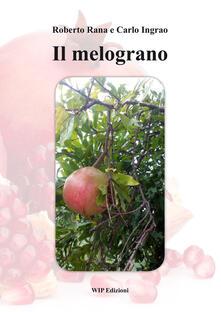 Il melograno - Roberto Rana,Carlo Ingrao - copertina