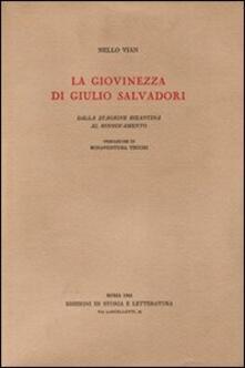 La giovinezza di Giulio Salvadori. Dalla stagione bizantina al rinnovamento - Nello Vian - copertina