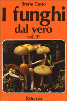 Antondemarirreguera.es I funghi dal vero. Vol. 3 Image
