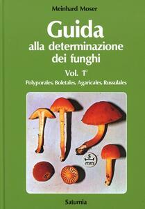 Guida alla determinazione dei funghi. Vol. 1: Polyporales, Boletas, Agaricales, Russulales.
