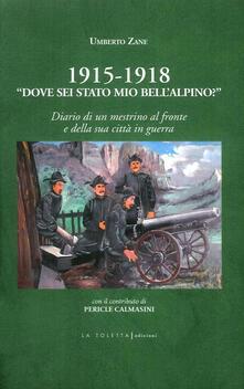1915-1918. «Dove sei stato mio bell'alpino?» Diario di un mestrino al fronte e della sua città in guerra - Umberto Zane - copertina