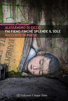Fai fieno finché splende il sole - Alessandro Di Cicco - copertina