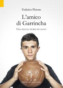 L' amico di Garrincha. Una piccola storia di calcio - Federico Pistone - copertina