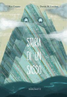 Storia di un sasso - Rita Cesareo - copertina