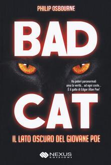 Squillogame.it Bad cat. Il lato oscuro del giovane Poe Image