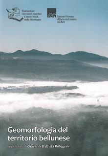 Geomorfologia del territorio bellunese. Negli scritti di Giovanni Battista Pellegrini - Giovanni Battista Pellegrini - copertina