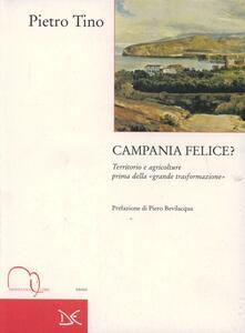 Campania felice? Territorio e agricolture prima della grande trasformazione - Pietro Tino - copertina