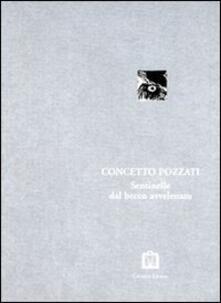 Sentinelle della pittura - Concetto Pozzati - copertina