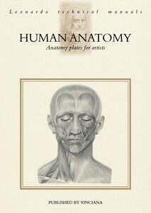 Human anatomy. Anatomy plates for artists
