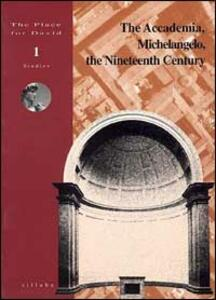 The Accademia, Michelangelo, the nineteenth century