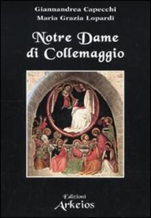 Antondemarirreguera.es Notre Dame di Collemaggio Image