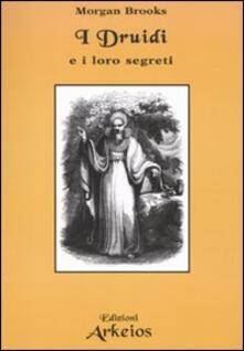 I druidi e i loro segreti - Morgan Brooks - copertina
