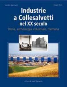 Industrie a Collesavetti nel XX secolo. Storia, archeologia industriale, memoria