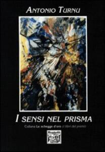 I sensi nel prisma