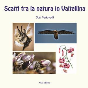 Scatti tra la natura in Valtellina