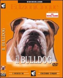 Bulldog inglese. DVD