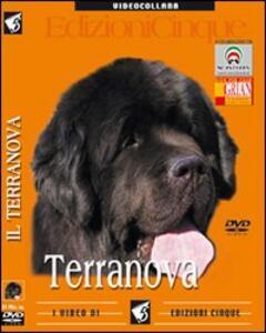 Terranova. DVD