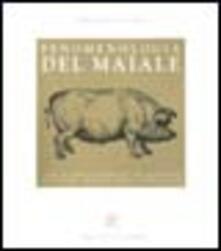 Fenomenologia del maiale - Stefano Scansani - copertina