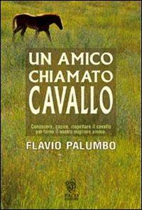 Un Un amico chiamato cavallo - Palumbo Flavio - wuz.it