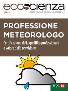 Professione meteorologo. Certificazione della qualifica professionale e valore della previsione - Arpae Emilia-Romagna,Ecoscienza - ebook