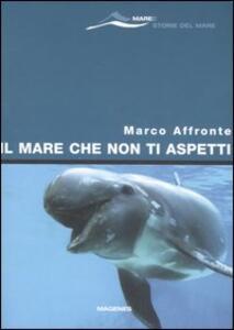 Il mare che non ti aspetti - Marco Affronte - copertina