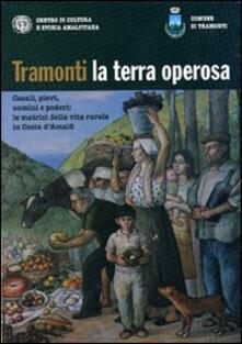 Tramonti la terra operosa. Casali, pievi, uomini e poderi. Le matrici della vita rurale in Costa d'Amalfi - copertina